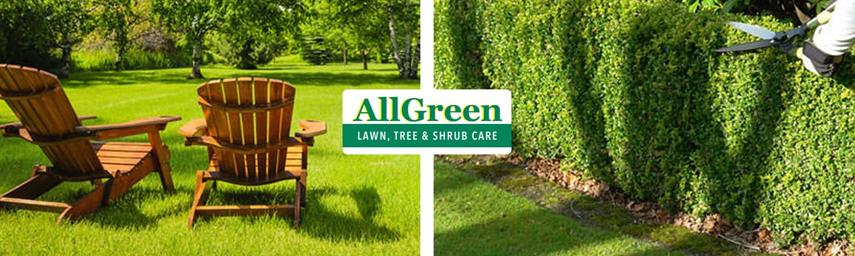 Lawn and Tree Care Massachusetts